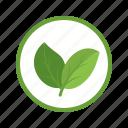 ecology, energy, environment, nature, organic, power, technology