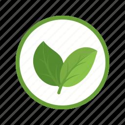 ecology, energy, environment, nature, organic, power, technology icon