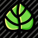 environment, garden, green, leaf, nature, plant, tree