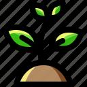 garden, gardening, growth, leaf, nature, plant, tree