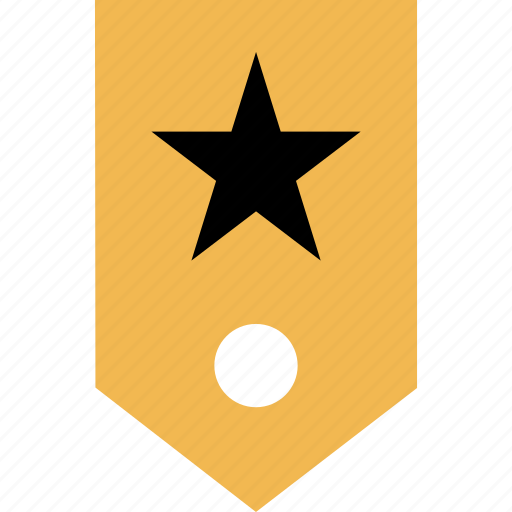 favorite, special, star, tag icon