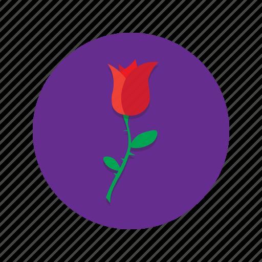 Flower, love, romance, romantic, rose, valentine icon - Download on Iconfinder