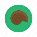 crab, shell, snail icon