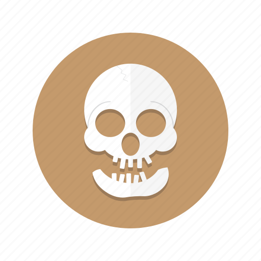Cranium, dead, death, head, skeleton, skull icon - Download on Iconfinder