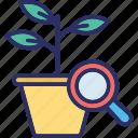 bio research, bio technology, botanical research, botany research icon