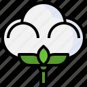 cotton, organic, botanical, textile, agriculture