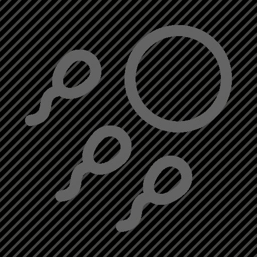 fertility, ovum, pregnancy, sperm icon
