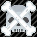 bones, dead, head, skull