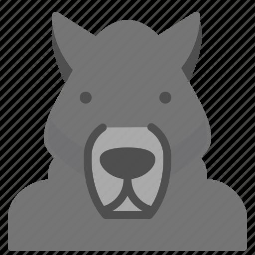 human, metamorphic, transform, werewolf icon