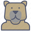 bear, human, metamorphic, transform icon