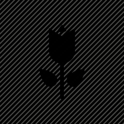 floral, flower, leaf, plant, pot icon