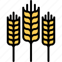 farm, farmer, garden, gardener, spike, wheat