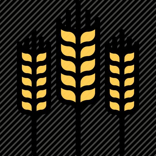 farm, farmer, garden, gardener, spike, wheat icon