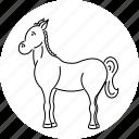 animal, farm, horse, riding