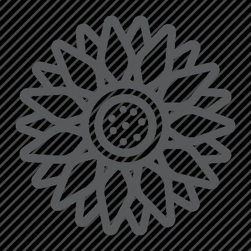 Plant, flower, sun, bright, oil, farming, agriculture icon