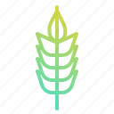 branch, cereals, food, grains, seeds0a, wheat icon