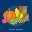 agriculture, cabbage, corn, harvest, organic, pumpkin, vegetable icon