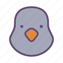 bird, dove, farm, head, pigeon icon