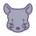 animal, chinchilla, farm, head, rodent icon