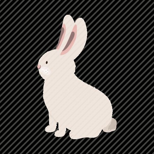 Animal, farm, pet, rabbit icon - Download on Iconfinder