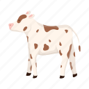 animal, calf, farm, pet