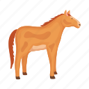 animal, farm, horse, pet icon