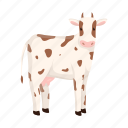 animal, farm, cow, pet