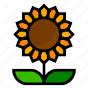 flower, sunflower icon