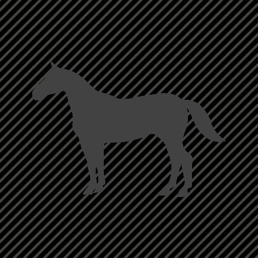 farm, grass, grazing, horse, horses, pasture icon