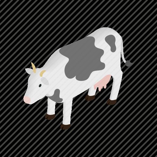 animal, cow, dairy, domestic, farm, isometric, livestock icon