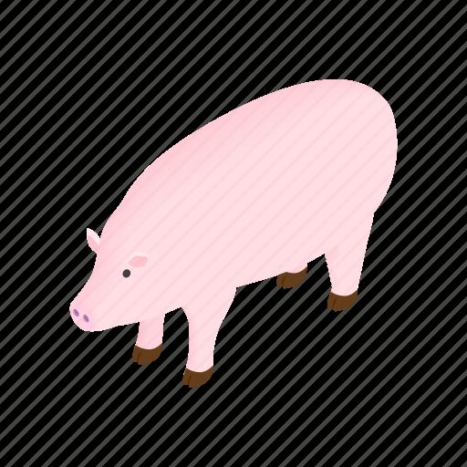 animal, domestic, farm, isometric, mammal, pig, piglet icon