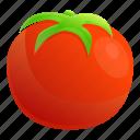 hand, 3, eco, tomato, farm, water