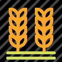 crop, farm, farming, grain, wheat