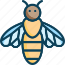 apis, bee farming, fly, honeybee, insects icon