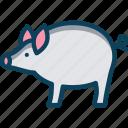 bank, dollar, pig, pig bank, pork