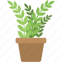 agriculture, gardening, home decoration, indoor plant, planting icon