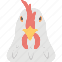 chicken head, cock, food, poultry farm, rooster icon