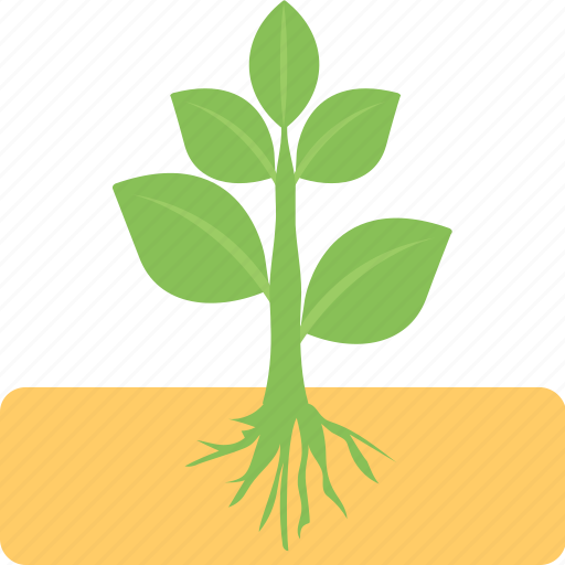 agriculture, farming, planting, sprout growth concept, young plant icon