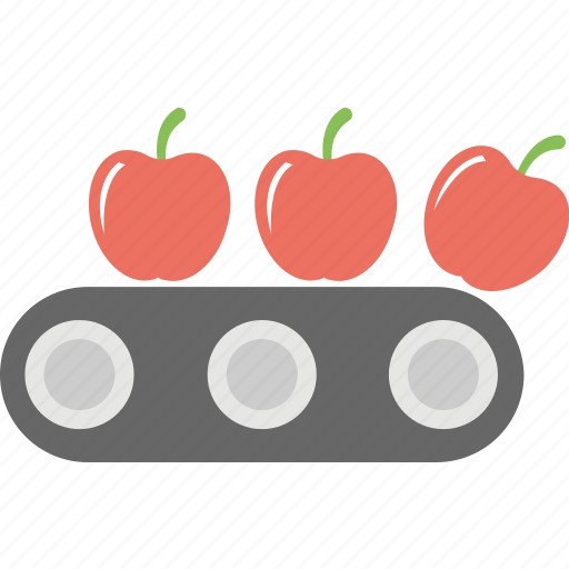 agricultural processing, apple production line, farming concept, food conveyor, fruit sorting icon
