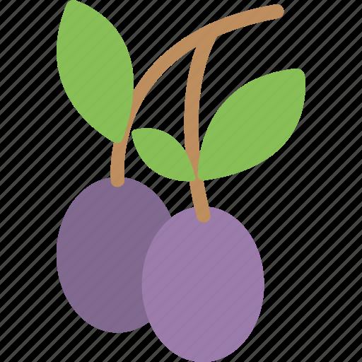 farming concept, fruit, healthy fruit, plum fruit, plum fruit twig icon