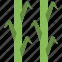 agriculture, corn plant, farming, growing plants, plantation icon