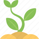 agriculture, baby plant, blooming sprout, new growth, organic plant, seedling sprout icon