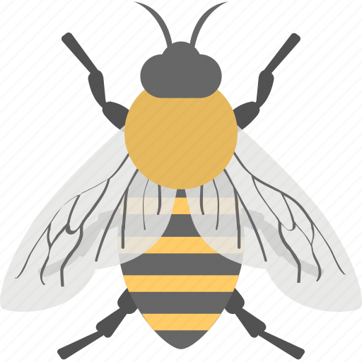 animal, cartoon bee, honey bee, insect, worker bee icon