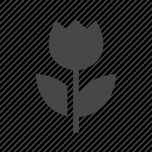 ecology, farming, flower, green icon