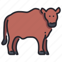 agriculture, animal, beef, cattle, cow, farm, livestock icon