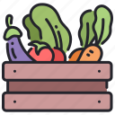 diet, food, fresh, healthy, organic, tomato, vegetable icon