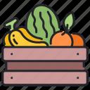 banana, food, fresh, fruit, healthy, orange, watermelon