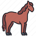 animal, equine, farm, horse, mammal, nature, wild icon