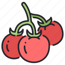 agriculture, food, fresh, healthy, plant, tomato, vegetable icon