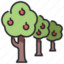 farm, forest, goods, grow, plant, product, tree icon